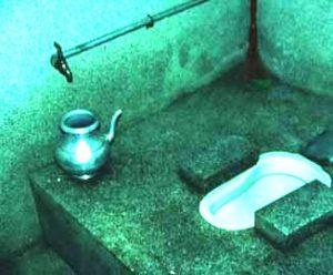 toilet-300x248